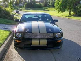 Racing Stripes Decals for Cars