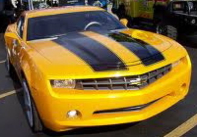 The Decal Shoppe Muscle Car Stripes For Chevy Camaro